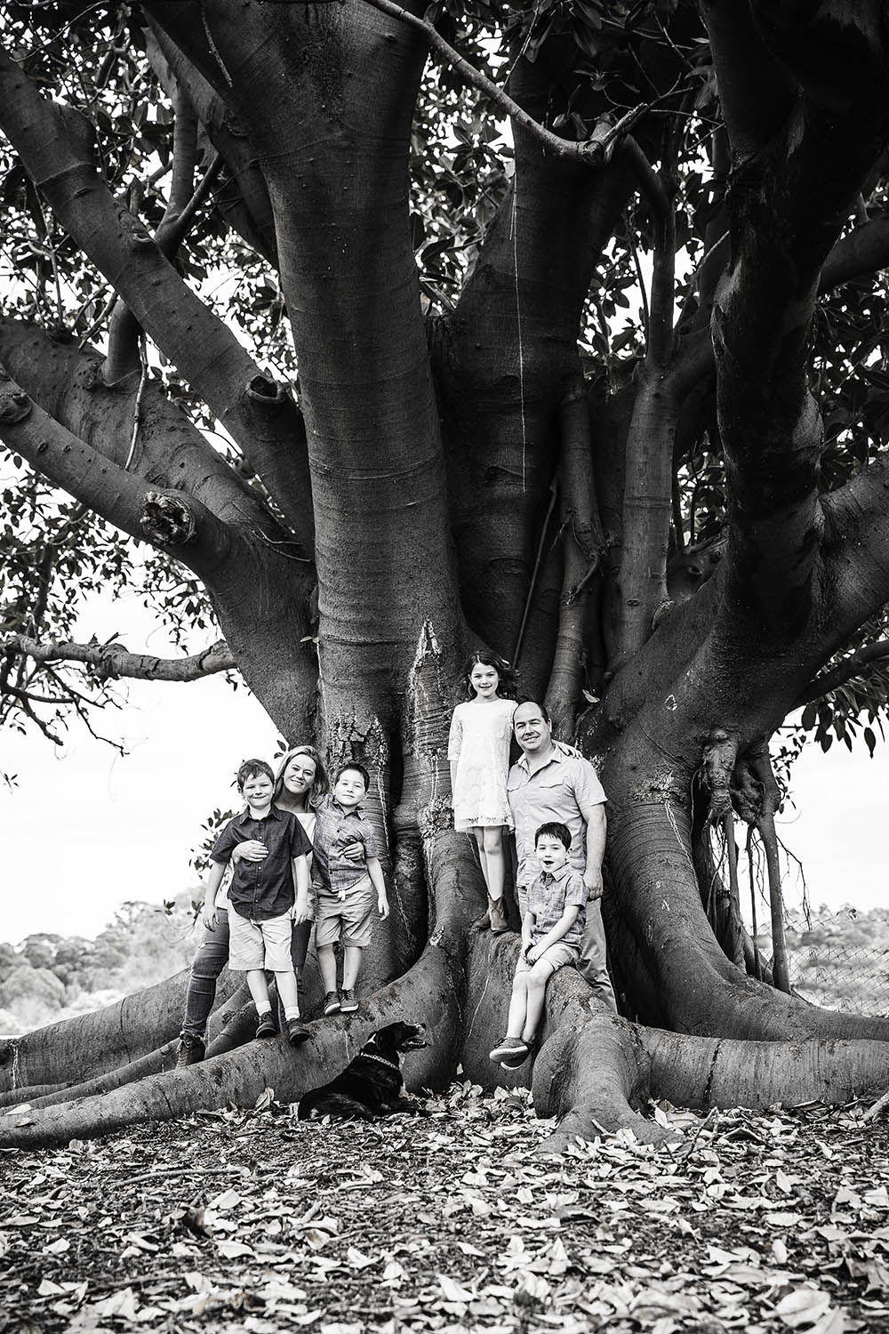 the L family 1 lifephotos photography sydney